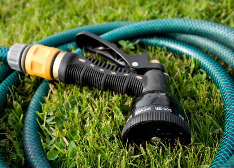 Hose placed on the grass