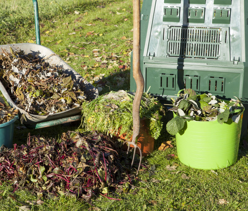 Cleaned up Grass cuttings, leaves and shrubs