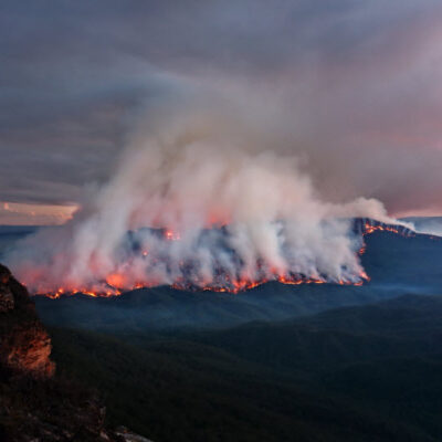How to Prepare Your House for a Bushfire