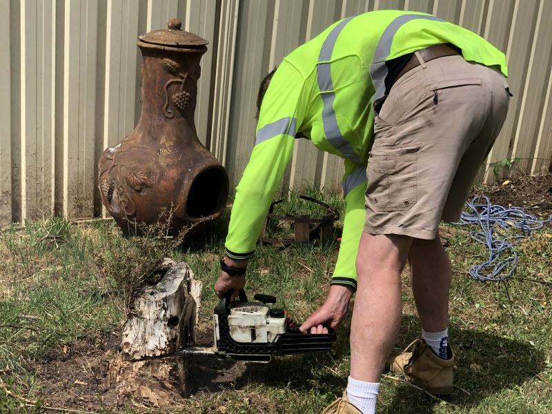 Man cleaning a backyard garden